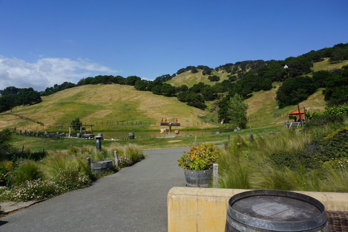 Green Dreams Wine Tour – Sonoma